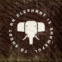 http://studio.novembro.net/files/gimgs/th-31_elephants.jpg